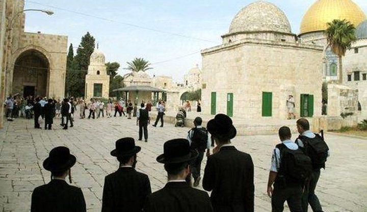 118 مستوطن اقتحموا المسجد الأقصى اليوم