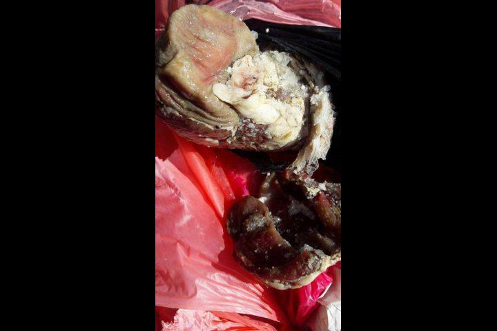 إيقاف ملحمة عن العمل وإتلاف (200) كغم لحم غير صالحة للاستهلاك (صور)