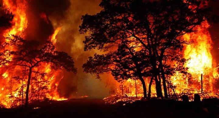 ارتفاع عدد ضحايا حرائق كاليفورنيا إلى 33 قتيلاً