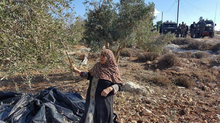 تصاعد وتيرة اعتداءات المستوطنين في قريوت(صور،فيديو)