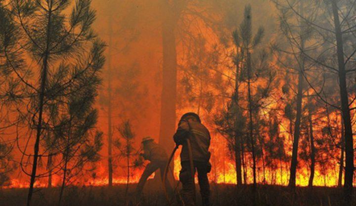 مقتل 27 شخصا جراء الحرائق في البرتغال