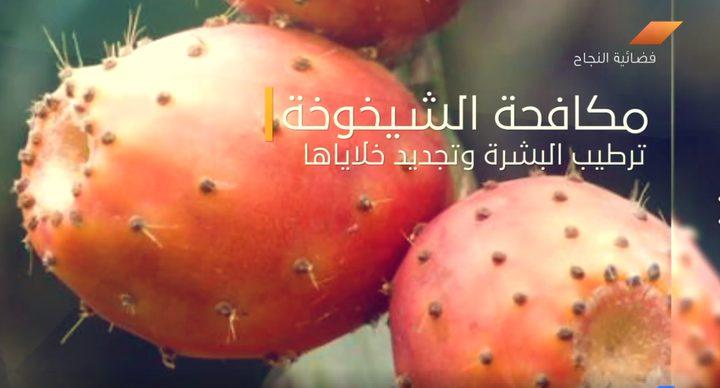 فوائد فاكهة الصبر