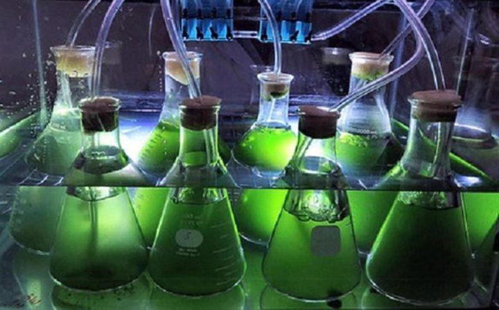تطوير وقودمن الماء والهواء