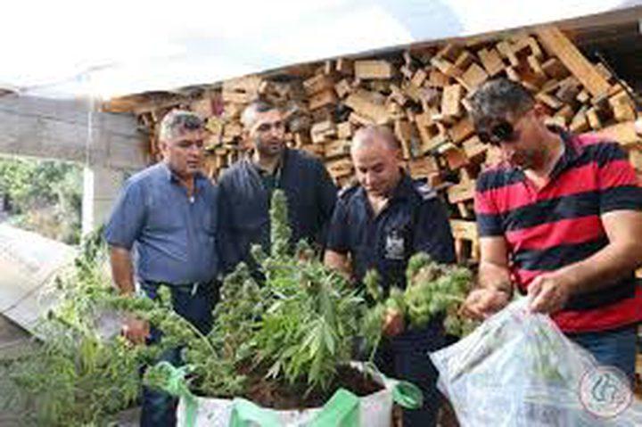 الشرطة تضبط تاجر مخدرات في عناتا