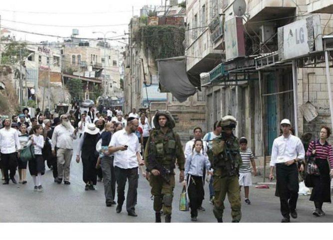 مستوطنون يهاجمون منزلا فلسطينيا وسط الخليل