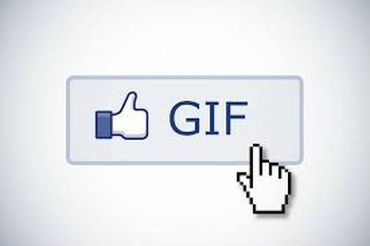 """فيسبوك تدعم إضافة صور متحركة GIF إلى """"استطلاع الرأي"""""""