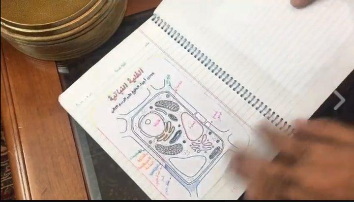 عندما يكون المعلم مبدعًا.. يرتقي أداء الطالب (فيديو)