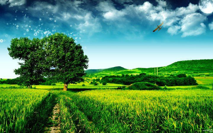 أين يوجد الهواء الأكثر نقاوة في العالم