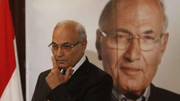 مصر: يحق لأي شخص يستوفي الشروط القانونية الترشُّح للإنتخابات الرئاسية