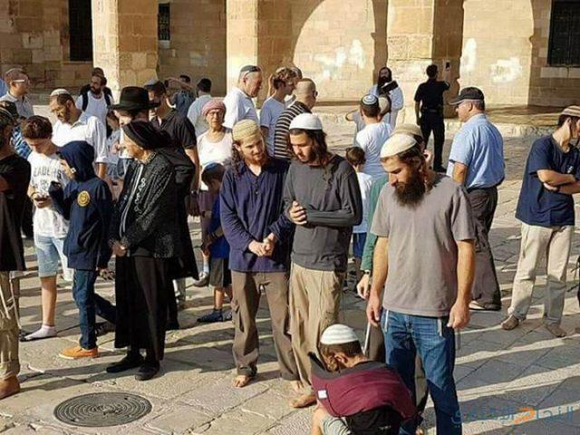 دعوات إستيطانية للتظاهر واقتحام المسجد الأقصى