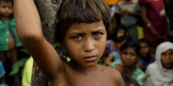 6700 من الروهينغا قتلوا في الشهر الأول من أعمال العنف في بورما
