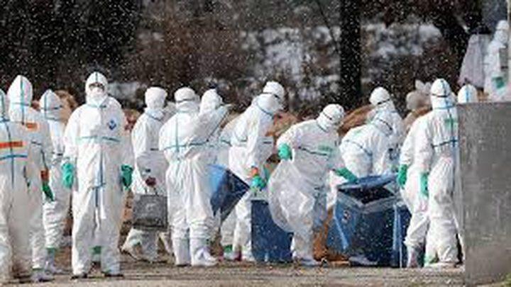 """وفاة أم وإصابة أطفالها الأربعة """"بإنفلونزا الطيور"""""""