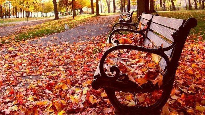 الخريف يودعنا الخميس
