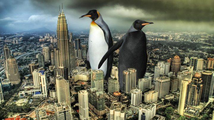 """علماء يعثرون على"""" البطريق العملاق"""""""