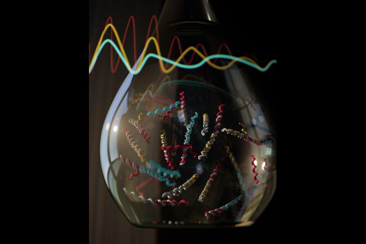 كيف نقوم ببرمجة الحمض النووي (DNA)؟
