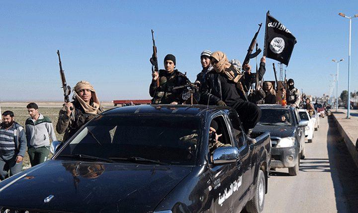 """تحقيق استقصائي يكشف عن سبب لجوء قادة """"داعش"""" للعيش في تركيا"""