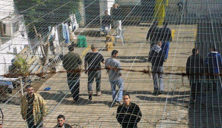 (531) أسيراً يقضون أحكاماً بالسجن المؤبد
