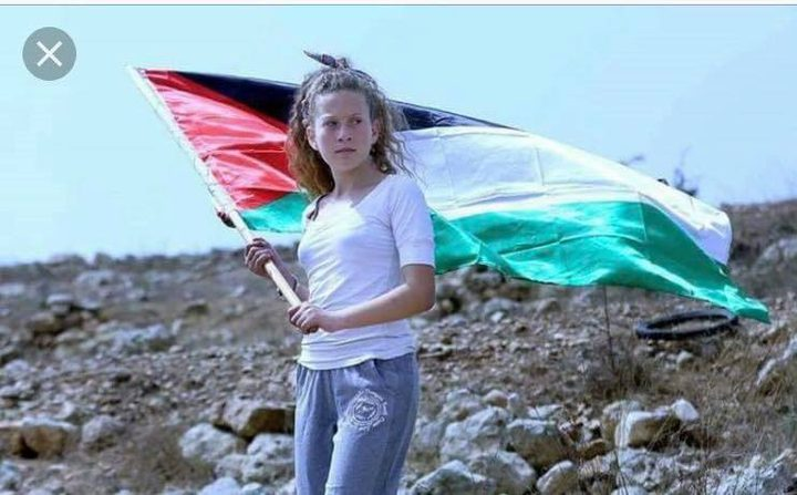 نائب أردني: شعر عهد أطهر من شوارب منتقديها