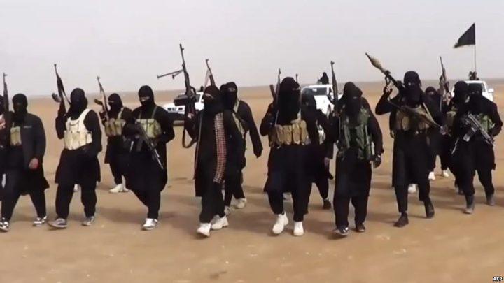 داعش يتنقل بين سيناء والرقة