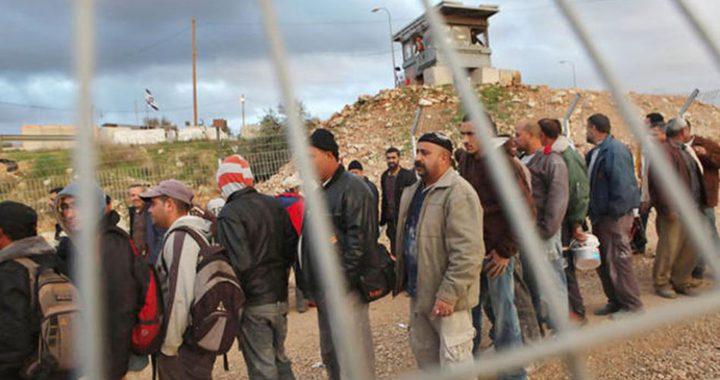 """غباي: يجب السماح للفلسطينيين من غزة بالعمل في """"إسرائيل"""""""