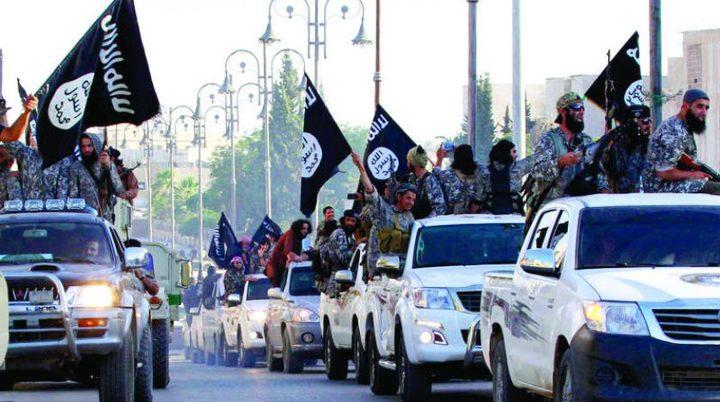 التحالف الدولي يتهم الأسد بالسماح لداعش بالتحرك في مناطق سيطرته