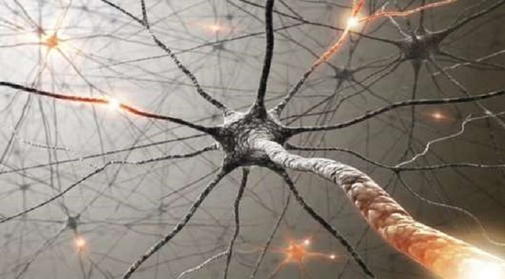 إكتشاف طريقة لإصلاح الأعصاب التالفة
