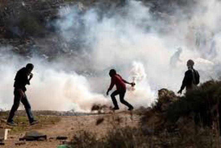 إصابة العشرات بالاختناق في مسيرة بلعين