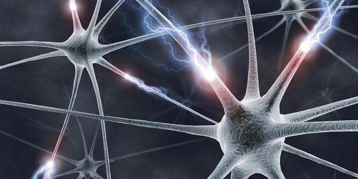 الدماغ هو مركز علاج الإدمان
