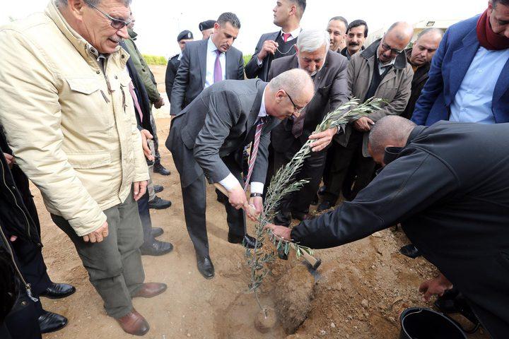 """الحمد الله: نحتفل بـ""""يوم الشجرة"""" للتجذر بأرضنا وهويتنا"""