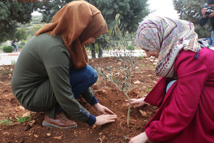 """""""التعليم البيئي"""" يدعو لمُضاعفة غرس الأشجار الأصيلة"""