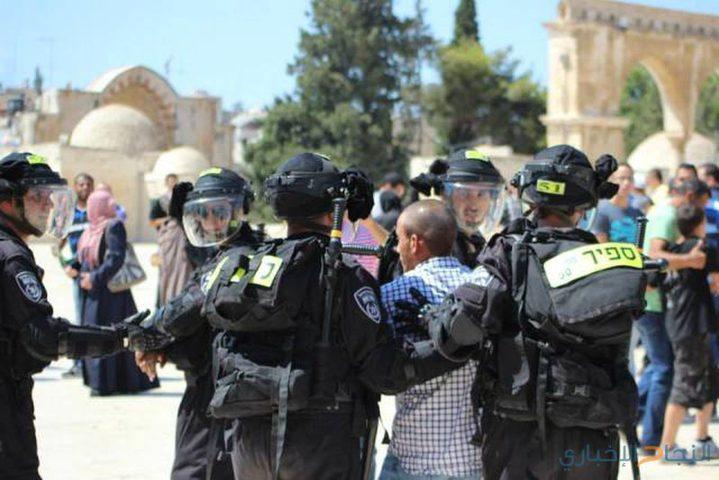الاحتلال يعتقل موظف الأوقاف في المسجد الأقصى