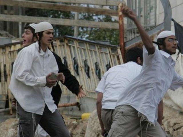 المستوطنون يعتدون على المواطنين شمال الضفة