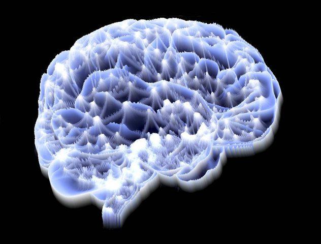 ما هي فائدة الشحنات الكهربائية للدماغ؟