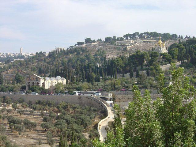 مشروع منتزه تهويدي جديد في جبل الزيتون بالقدس