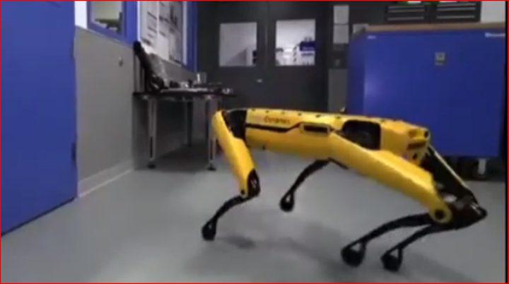لقطة لروبوتين من غوغل تذهل الجميع
