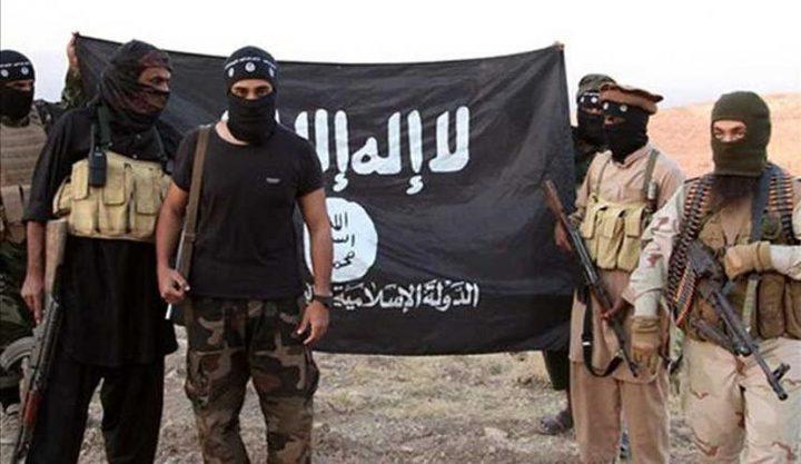"""خلاف بريطاني أمريكي حول """"خنافس"""" تنظيم الدولة"""