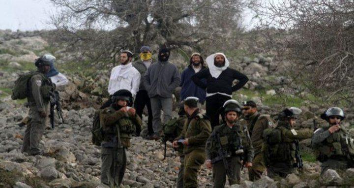 الإفراج عن معتقلين من الخليل بعد شجار مع مستوطنين اليوم