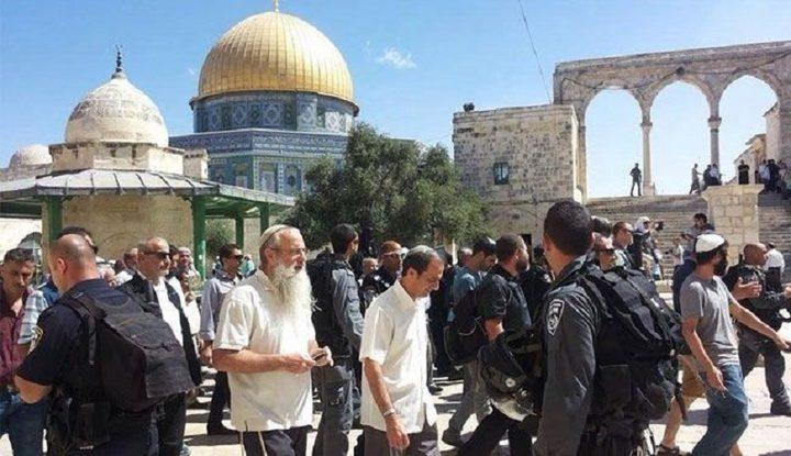 86 مستوطنا يقتحمون المسجد الأقصى بحراسة مشددة