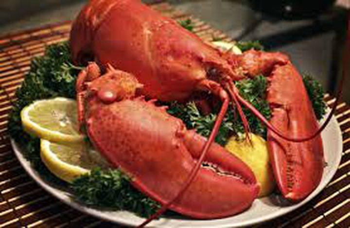 """حظر الطريقة المعتادة لطهي """"جراد البحر"""" في سويسرا"""