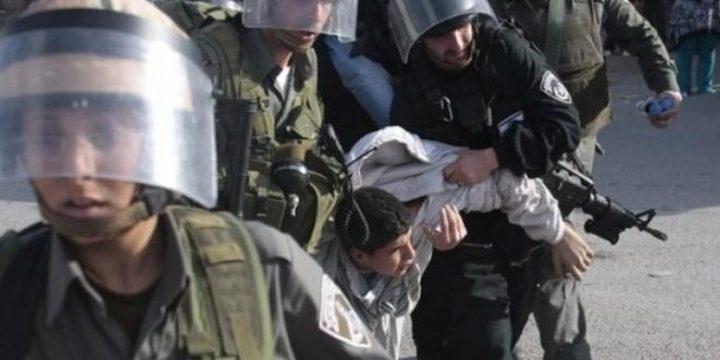 الاحتلال يعتقل طفلًا بعد عودته من المدرسة