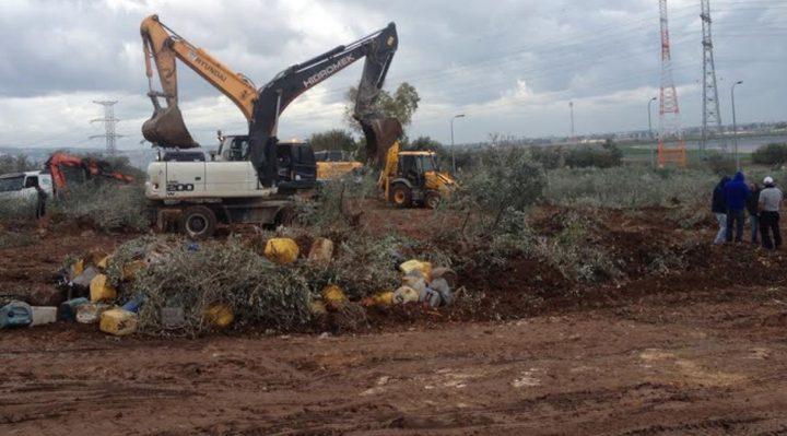 الاحتلال يواصل تجريف أراضي ظهر المالح لصالح الجدار