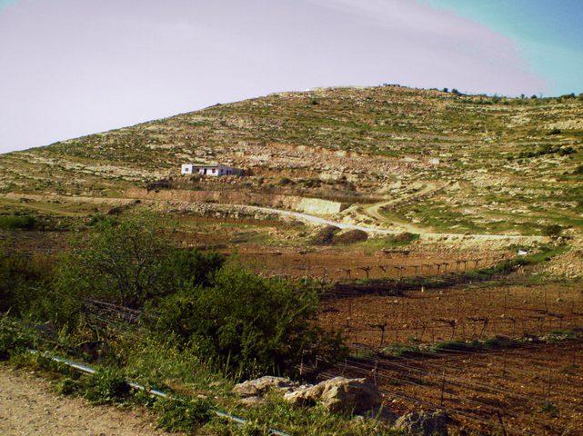 """الاحتلال والمستوطنون ينصبون 4 """"كرفانات"""" جديدة على جبل شرق الخليل"""