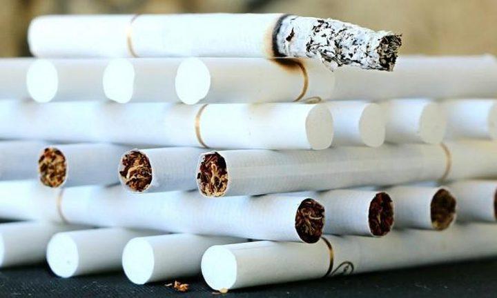 7 ملايين شخصا يلقون حتفهم سنويا بسبب التدخين