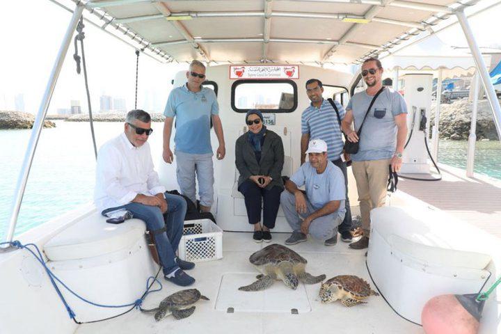 انقاذ 3 حيوانات بحرية نادرة في البحرين