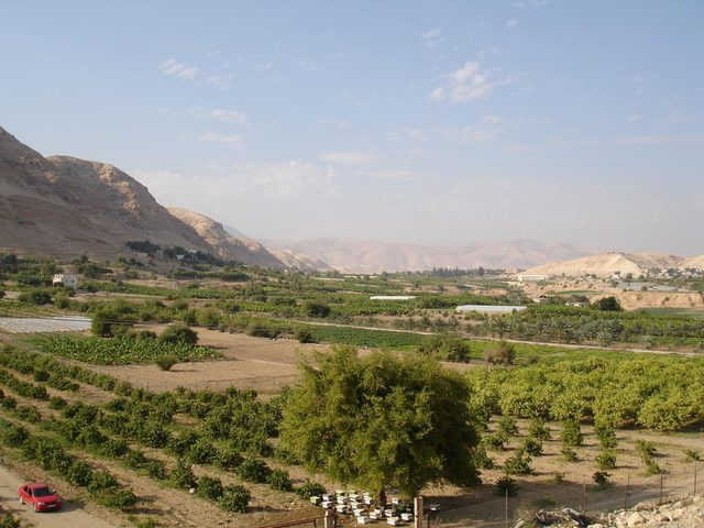 """""""جودة البيئة"""": أريحا أكثر المناطق البيئية استهدافاً من قبل الاحتلال"""