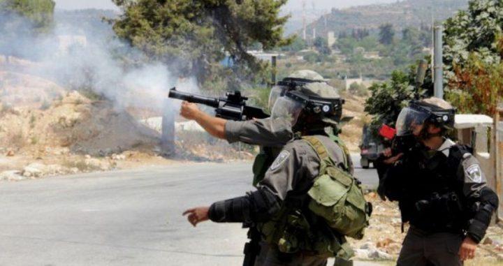 إصابة مواطنين اثنين في موجهات مع الاحتلال في كفر قدوم