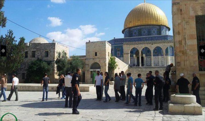 مستوطنون يقتحمون الأقصى والاحتلال يعتقل أحد حراس المسجد