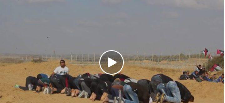 شاهد بالفيديو: لحظة قنص الاحتلال لشاب أثناء تأدية الصلاة