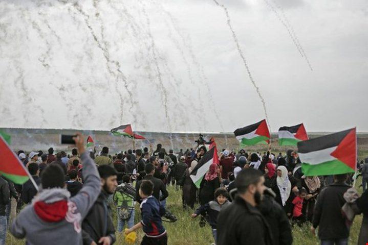السفارة الفلسطينية بالقاهرة تنعى شهداء يوم الأرض