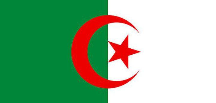 الجزائر تدين مجزرة الاحتلال ضد الفلسطينيين في مسيرة العودة الكبرى